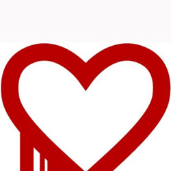 What is Heartbleed Security Flaw and How Bad is it?